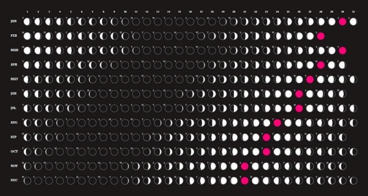 lunar 2010