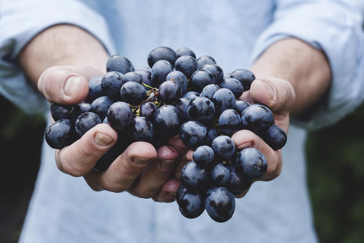 ענבים, לא בטוח שאורגניים