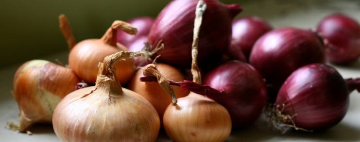 Organic Onions, Susy Morris, Flickr, cc-by-nc.