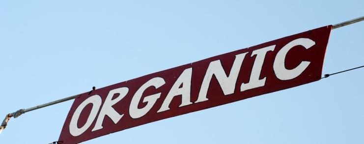 בתמונה: Organic, StephanieVacher, Flickr.