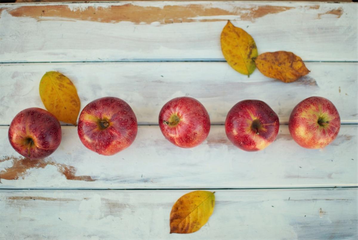 תפוחים (לא בהכרח אורגניים), Photo by Fischer Twins on Unsplash.